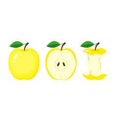 whole yellow apple half apple slice bitten apple vector image
