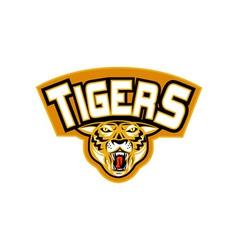 Tiger sports mascot head front vector image vector image