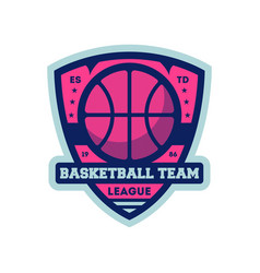 Basketball professional team vintage label vector