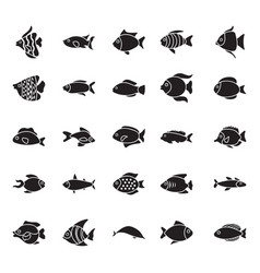 collection of fishes glyph icons vector image