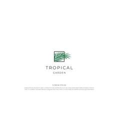 elegant luxury square coconut palm date leaf vector image