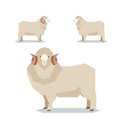 Flat geometric merino sheep vector