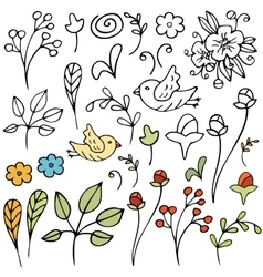 Hand drawn floral set Isolated vector