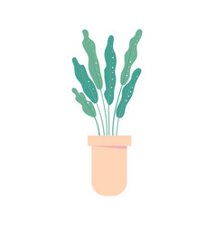 houseplant in pot isolated flowerpot home plant vector image