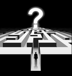 Man in the maze question mark in the labyrinth vector
