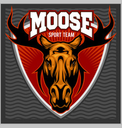 sport moose team logo vector image