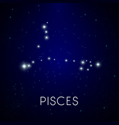 Zodiac constellation pisces astrology vector