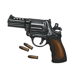 pistol revolver gun and ammo sketch vintage vector image