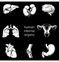 Internal human organs silhouettes vector image vector image