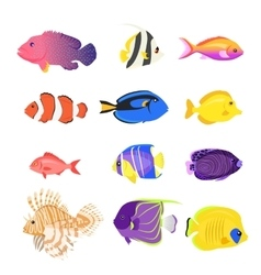 Set of Sea Fish Color Design Flat vector image
