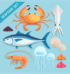 seafood set crab squid tuna shrimp jellyfish vector image vector image