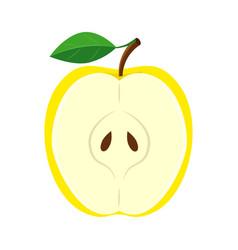 half yellow apple slice vector image