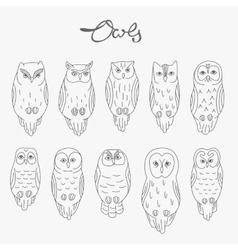 Set of owls lineart vector