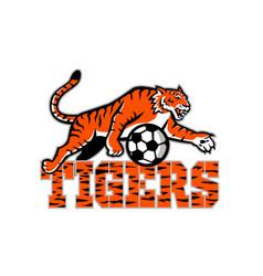 Tiger dribbling soccer ball mascot vector