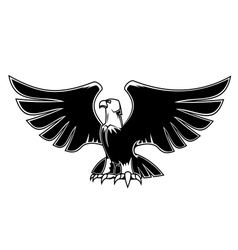 Majestic eagle with open wings vector image vector image