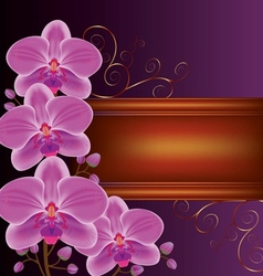 Background with exotic flower orchids vector