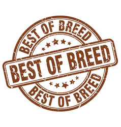 Best of breed brown grunge stamp vector