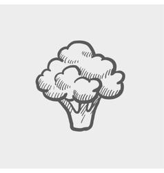 Brocolli sketch icon vector