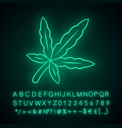 Cannabis leaf neon light icon weed product ganja vector