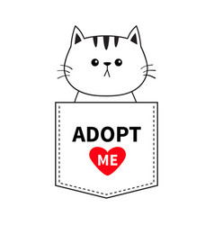 Cat sitting in pocket adopt me red heart cute vector