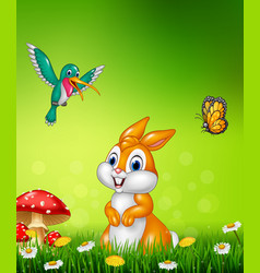 Cute bunny with beautiful green grass vector