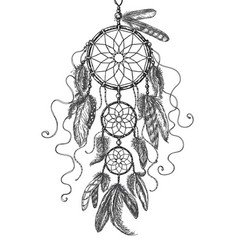 dream catcher sketch vector image