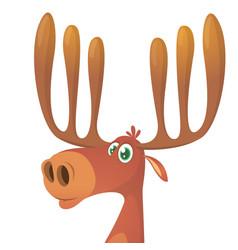 funny cartoon moose vector image
