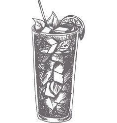 mojito cocktail hand drawn vector image