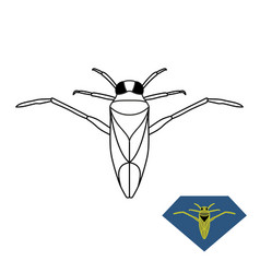 water bug backswimmer insect vector image