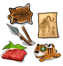 tiger weapon meat skin endangered concept vector image