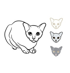 Drawing of adorable cat with three styles small vector image