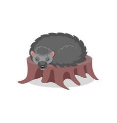 hedgehog sleeping on a tree stump cute animal vector image