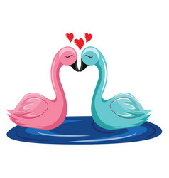 pink and blue swan kissing in the water on white vector image