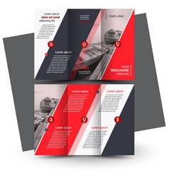 Tri-fold red brochure design template vector