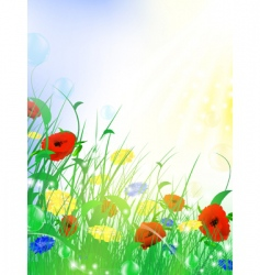 flower meadow vector image vector image
