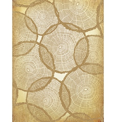 Aged Background with Tree Rings Pattern vector image vector image