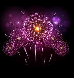 Holiday festival pink firework independence day vector
