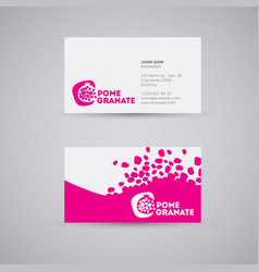 Logo pomegranate business card vector