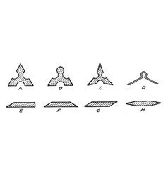 Scale ruler shapes wide range of sizes vintage vector