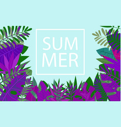 slogan summer in a trendy frame above tropic vector image