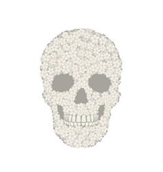 stylized white verbena skull on white background vector image