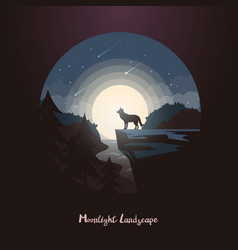 wolf animal on rock or cliff at night forest vector image