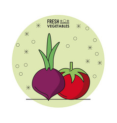 colorful poster of fresh vegetables with beet and vector image vector image
