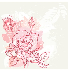 Floral Roses Background vector image