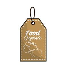 emblem vegetarian food icon stock vector image vector image