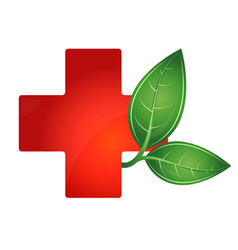 red cross medical and green leaf vector image vector image