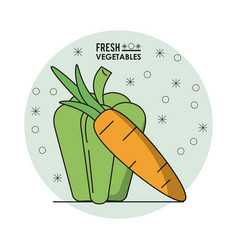 colorful poster of fresh vegetables with green vector image vector image