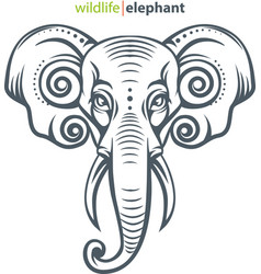elephant head vector image