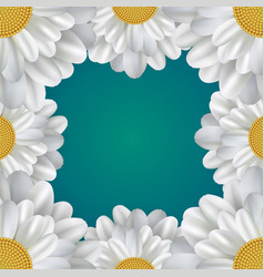 square frame with daisies and a place for text vector image vector image