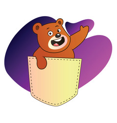 brown bear waving from a pocket in purple blob on vector image